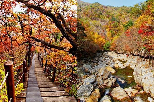 Những nơi bạn nhất định phải đến khi đi du học Hàn Quốc