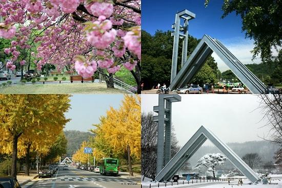 Khám phá vẻ đẹp kỳ diệu 4 mùa của Hàn Quốc