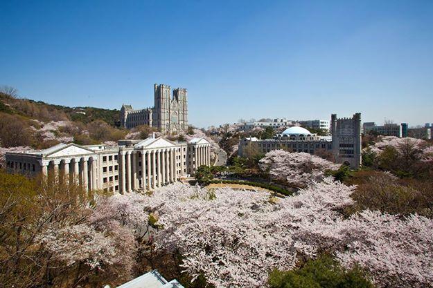 Thông tin trường đại học Kyung Hee (Kyung Hee University) mới nhất