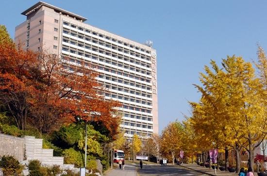 Có hay không nên đi du học Hàn Quốc?